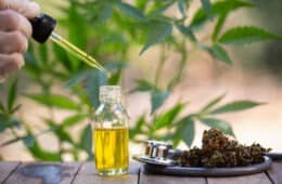 What is the strongest CBD Oil in the UK?