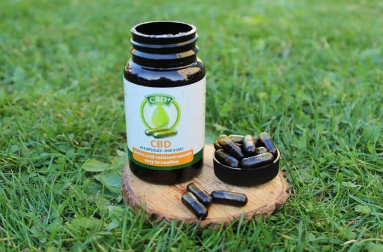 Jacob Hooy (Holland & Barrett) CBD Capsules Review